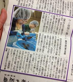 北海道新聞5月30日.JPG