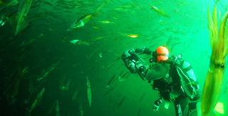 季節の海 RAUSU.jpg