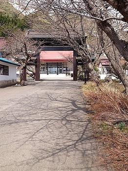 誠諦寺3.JPG
