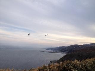 クジラの見える丘 (1).JPG